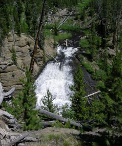 scenic view of Little Gibbon Falls